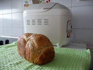 oster bread machine manual ckstbrtw20