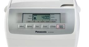 Panasonic SD-RD250